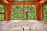 Rustic Cabin with Private Jacuzzi Tub and View