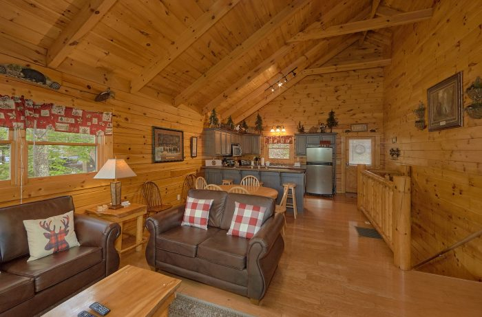 Premium Cabin with Fully Equipped Kitchen - A Bear Affair