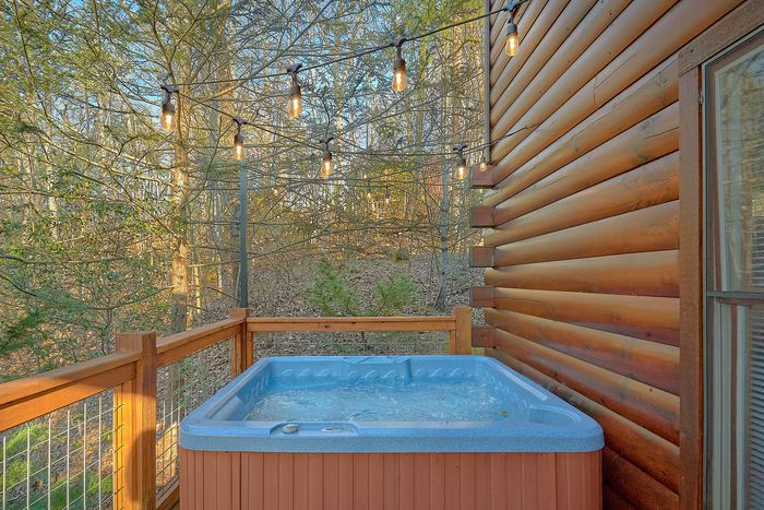 Spacious Hot Tub - A Bear Encounter