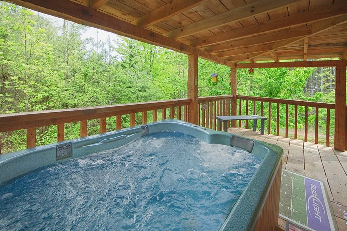 Private 1 bedroom honeymoon cabin with hot tub - A Love Nest