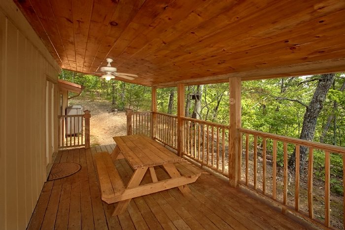 Secluded cabin with Picnic table and Hot Tub - Above the Rest