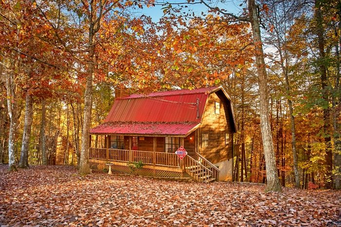 Rustic 2 Bedroom Cabin with Wooded View - Alpine Retreat