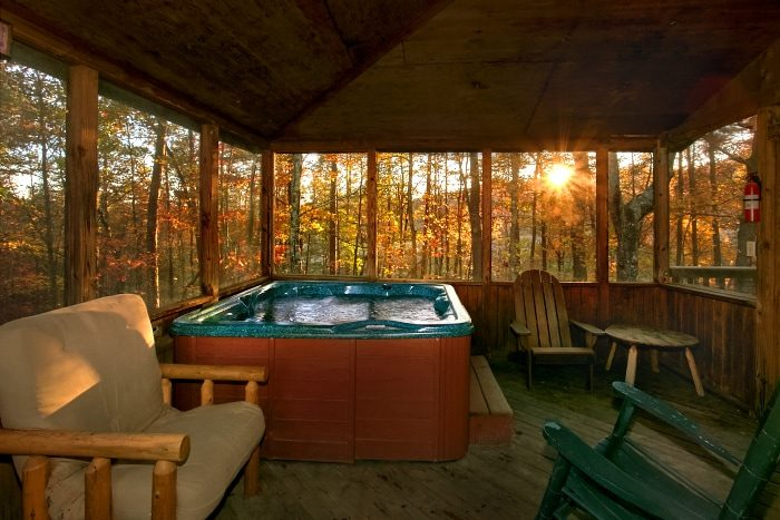 Rustic Cabin with Hot Tub on Screened in Porch - Alpine Retreat