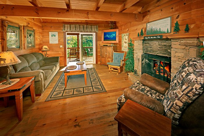 Cabin with Spacious Living Room - Amazing View