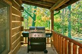 Cabin with a Grill