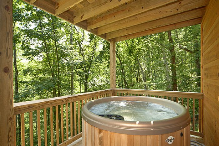 2 Bedroom Cabin with an Outdoor Hot Tub - Bear-rif-ic