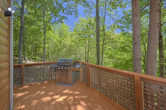 Spacious 3 Bedroom Cabin with Grill and Hot Tubs - Forever Country