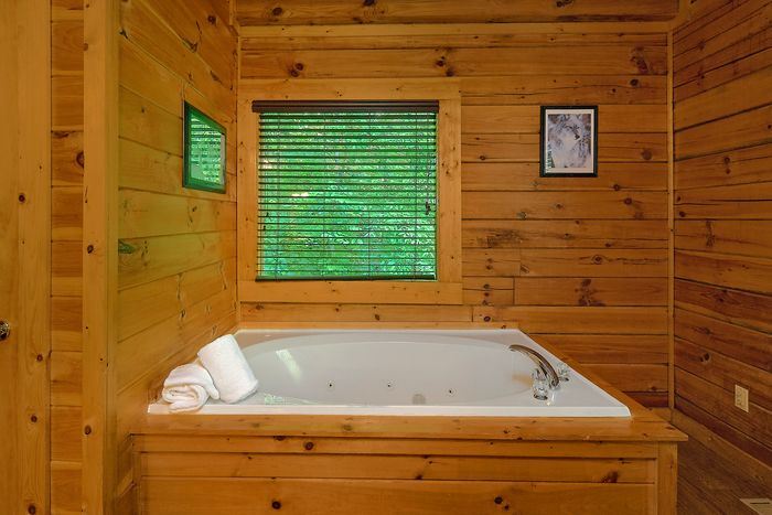 Smoky Mountain 1 Bedroom Cabin with Kitchen - Git - R - Done