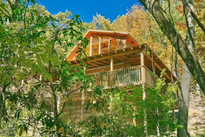 Great Smoky Mountain 1 bedroom cabin - Kicked Back Creekside