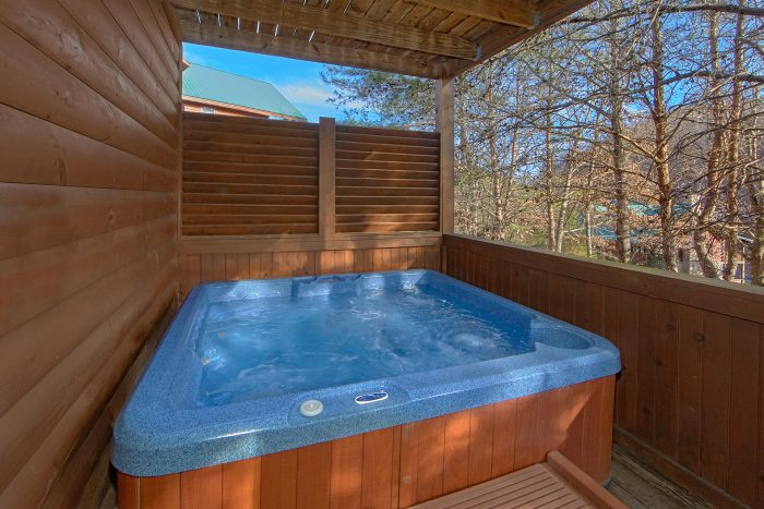 2 bedroom cabin with hot tub and resort pool - Lil Cajun Cabin