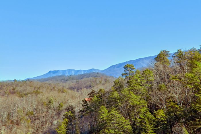 1 Bedroom 2 Bath Cabin with Mountain Views - Mountain Hideaway