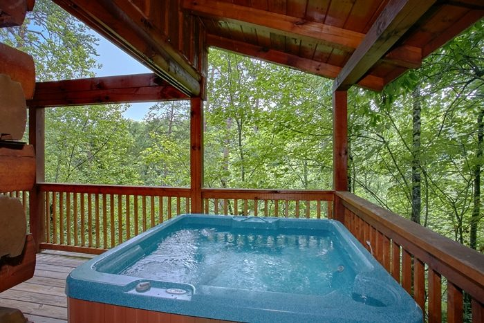 Honeymoon Cabin with Private Hot Tub - Mountain Star