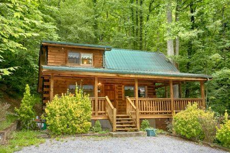 Bare Bottom Cabin: 1 Bedroom Wears Valley Cabin Rental