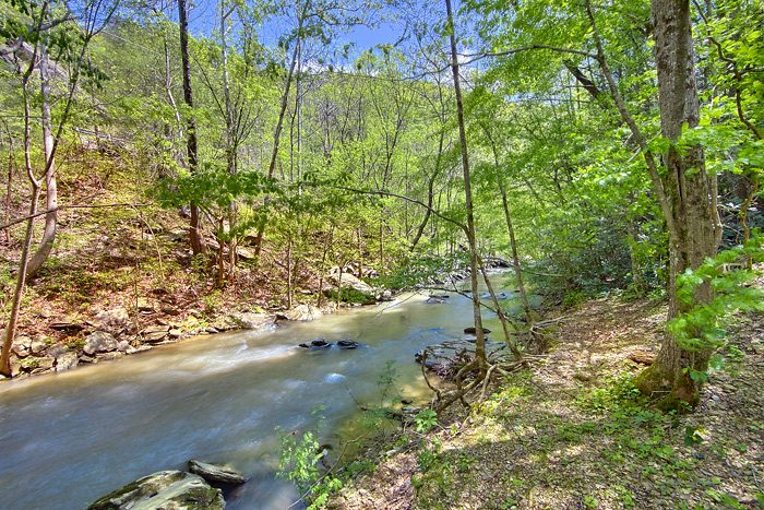 Wears Valley Cabin located creekside - On the Creek