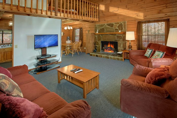 Cabin with wood burning fireplace - Owl's Mountain View