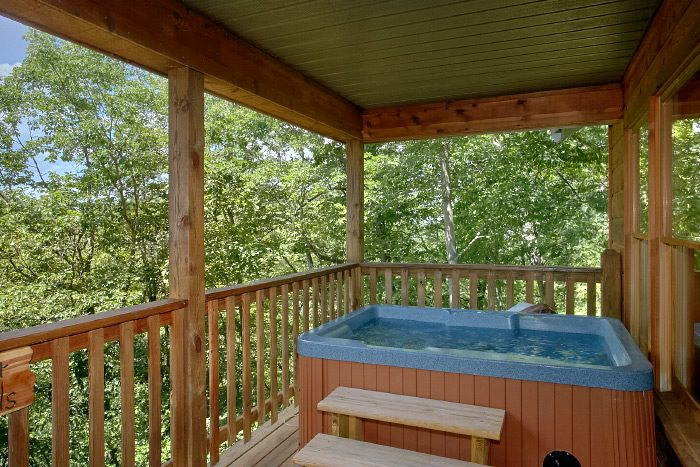 1 Bedroom Cabin with Hot Tub and Wooded Views - Sugar Plum