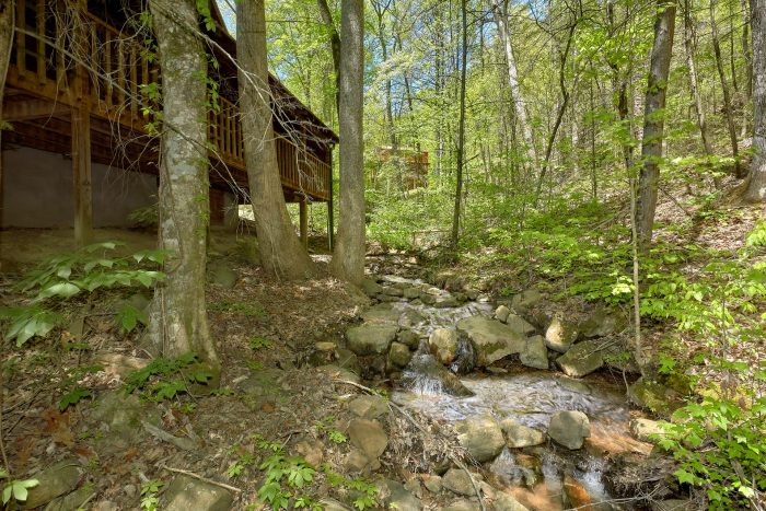 1 Bedroom Cabin with a Fire Pit & Picnic Table - Turtle Dovin'
