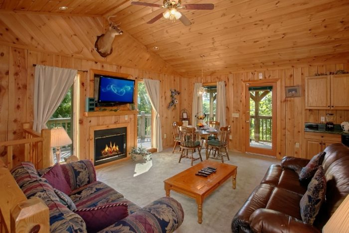 Rustic Cabin with Fireplace in the Living Area - Valley View