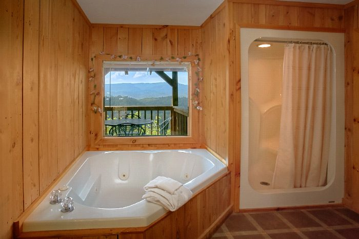 Honeymoon Cabin with Jacuzzi and Private Bath - Valley View