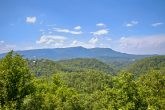 Smoky Mountain 1 Bedroom Cabin with Views