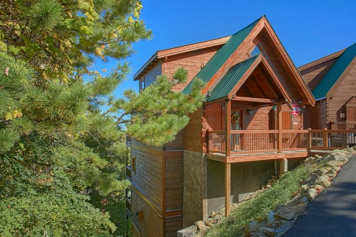 4 Story 3 Bedroom cabin with Pool Sleeps 12 - View Topia Falls